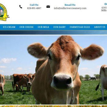 Website Design Company & SEO